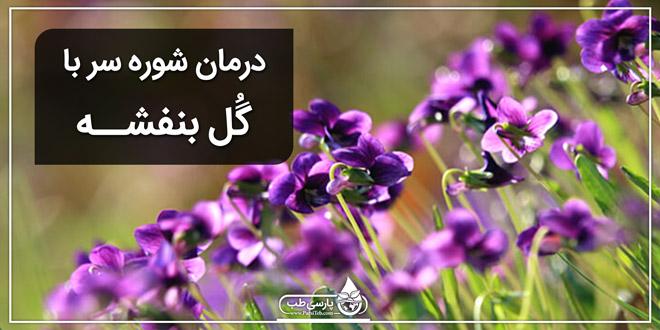 گل بنفشه و درمان شوره سر
