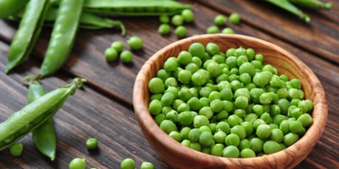روش صحیح انجماد نخود فرنگی و باقلا سبز