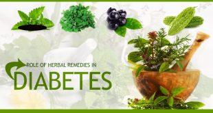 بهترین گیاهان دارویی برای مبتلایان به دیابت