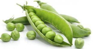 خواص نخود سبز