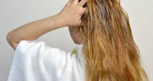 روغن های گیاهی برای موهای خشک