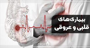 بیماری های قلبی - عروقی : درمان گیاهی بیماری های قلبی و عروقی
