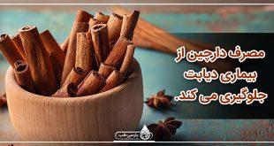 مصرف دارچین از بیماری دیابت (قند خون) جلوگیری میکند.