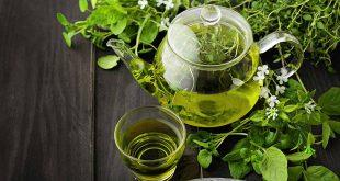 مصرف چای سبز به کاهش کلسترول خون کمک می کند
