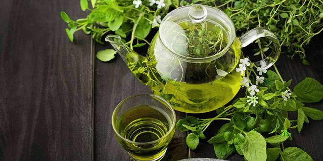 درمان با چای سبز