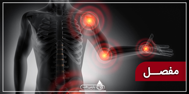 مفصل و آناتومی بدن