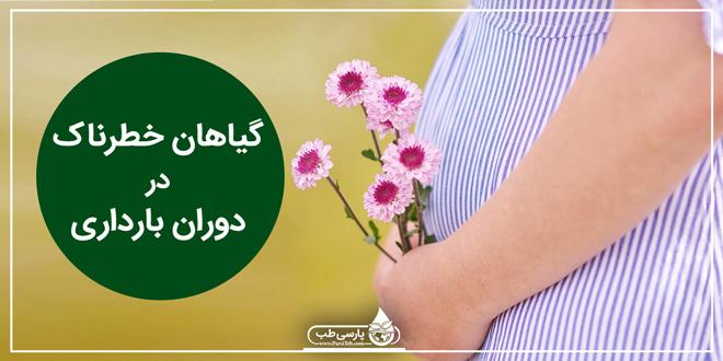 گیاهان خطرناک در دوران بارداری