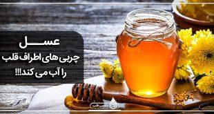 عسل چربی های اطراف قلب را آب می كند