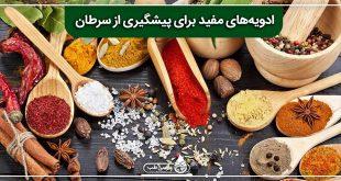 ادویههای مفید برای پیشگیری از سرطان