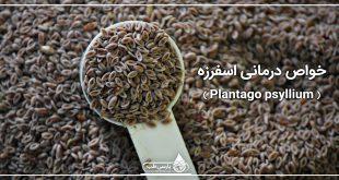 خواص درمانی اسفرزه ( Plantago psyllium )