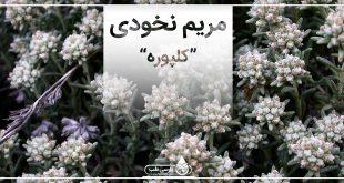 مريم نخودي