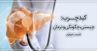 کبد چرب: چیستی، چگونگی و درمان (4)