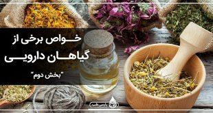 خواص برخی از گیاهان دارویی بخش دوم