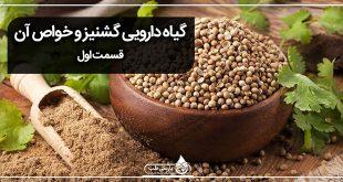 گیاه دارویی گشنیز و خواص آن (1)