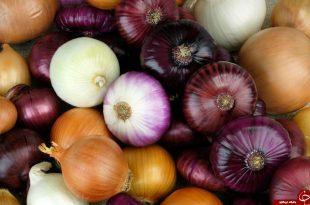 پیاز ( Onions ) گیاهی با خواص دارویی بسیار زیاد