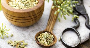 رازیانه گیاهی برای رفع لکههای پوستی و کاهش دردهای زنانه