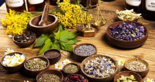 خواص دارویی و درمانی گل های درمانگر