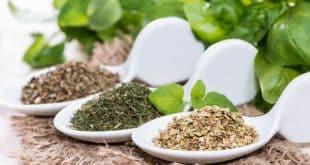 گیاهان مفید برای کاهش فشار خون