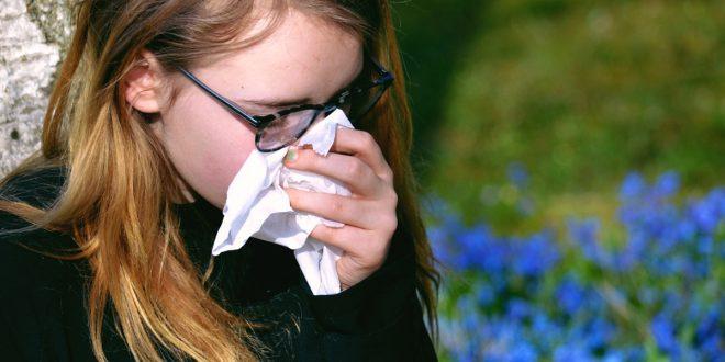 گیاهان مفید ضد آلرژی