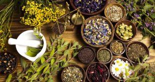 Herbal-Medicine نسخه های گیاهی