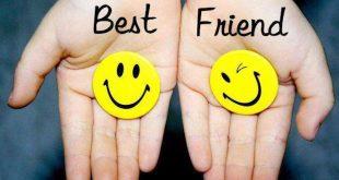 بهترین دوست و دوستی