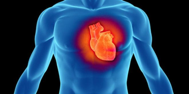درد قلب و قفسه سینه - پارسی طب