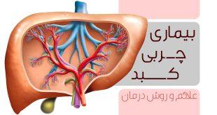 علایم بیماری چربی کبد و راههای درمان