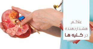 نكاتي در مورد کلیه ها و علايم هشدار دهنده بيماري کلیه - پارسی طب