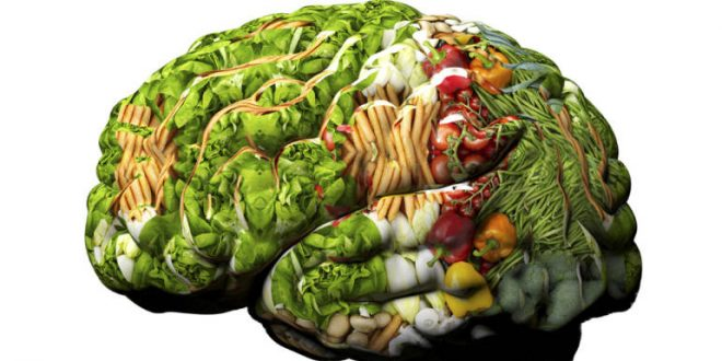 غذاهای تقویت کننده هوش و حافظه