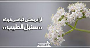 آرام بخش گیاهی قوی: «سنبلالطیب»