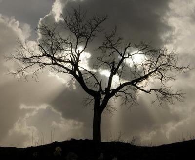 دعا برای دوری از نکبت و ناخوشی
