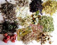گیاه درمانی 2
