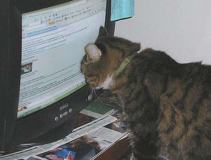 برای جلوگیری از سوزش چشم در هنگام کار با کامپیوتر چه کنیم ؟