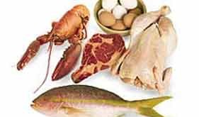 منابع غذايي پروتئين ها