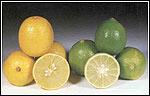 لیمو ترش میوه ای مقوی