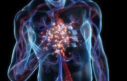 بیماریهای قلبی : دامنه و اثر