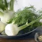 رازیانه گیاهی پاییزی و درمانی برای بیماران کلیوی و سکته ای