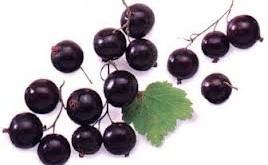 انگور فرنگی درمانی برای تسکین ورم مفاصل