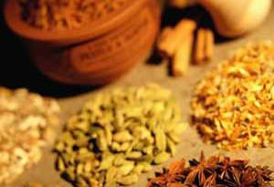 تاریخچه طب سنتی چین 2
