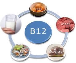 از ویتامین B12 چه می دانید؟