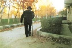 پیاده روی سالمندان