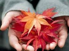 تدابیر طب سنتی برای جلوگیری از بیماریهای پاییز