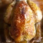 بال و گردن مرغ برای خانمها ممنوع