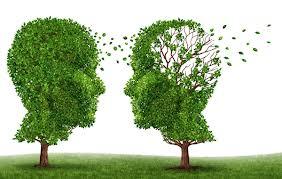آلزایمر و تغذیه