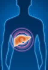 70 درصد افراد چاق دچار کبد چرب می شوند