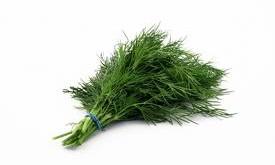 شوید گیاهی آرامبخش