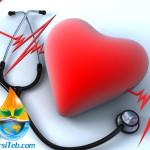 بیماری های قلبی – عروقی و گیاه درمانی