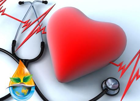 بیماری های قلبی - عروقی و گیاه درمانی