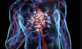 بیماری کرون و کولیت روده (IBD) و ارتباط آن با حملههای قلبی و سکته