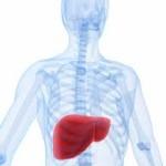 طب سنتی در درمان کبد چرب موفقتر است